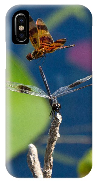 Dragon Fly 195 IPhone Case