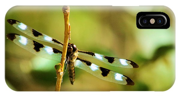 Little Things iPhone Case - Dragon Fly On A Summer Morning by Jeff Swan