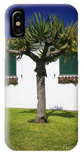 Dragon Tree Garden House IPhone Case