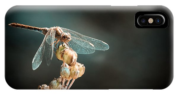 Dragonfly Phone Case by Gabriela Insuratelu