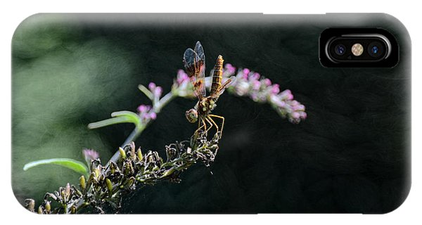 Dragonfly II IPhone Case
