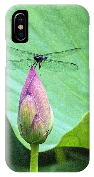 Dragonfly Landing On Lotus IPhone Case