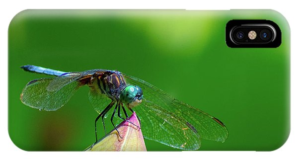 Dragonfly On Lotus Bud IPhone Case