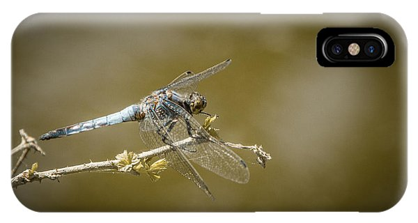 IPhone Case featuring the photograph Dragonfly On The Spot by Stwayne Keubrick