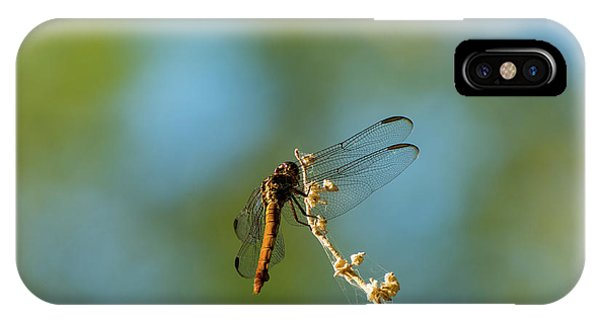 Dragonfly Wings IPhone Case