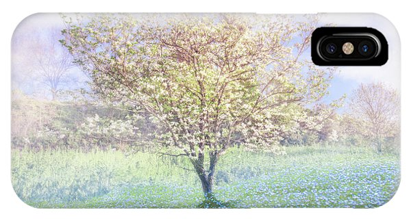 dogwood tree iphone case dreamy dogwoods by debra and dave vanderlaan