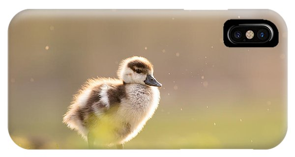 Goslings iPhone Case - Dreamy Duckling by Roeselien Raimond
