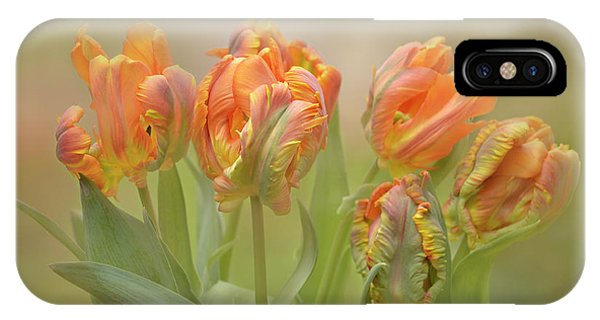 Dreamy Parrot Tulips IPhone Case