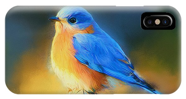 Dressed In Blue IPhone Case