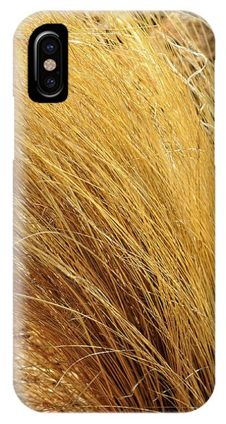 Dried Grass IPhone Case