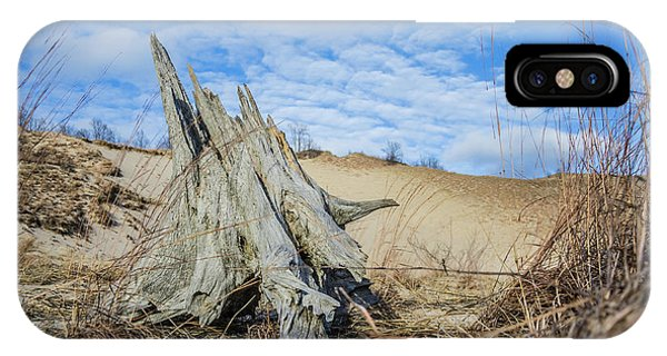 Dried Stump At Warren Dunes IPhone Case