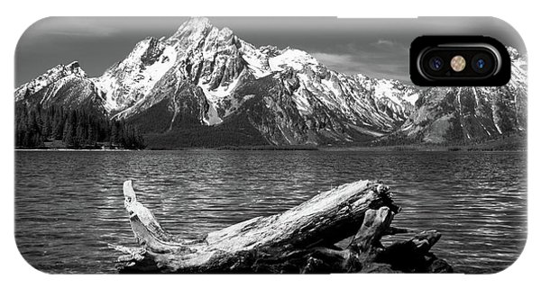 driftwood and Mt. Moran IPhone Case