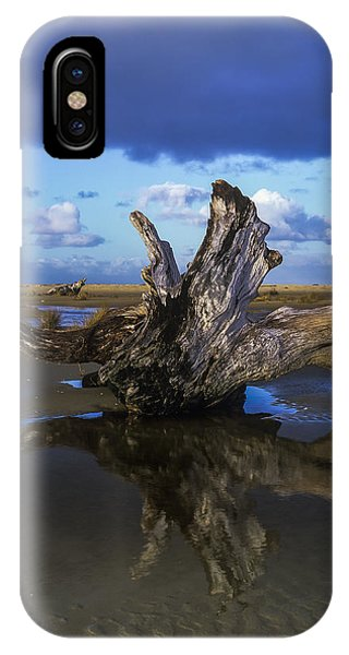 Driftwood And Reflection IPhone Case