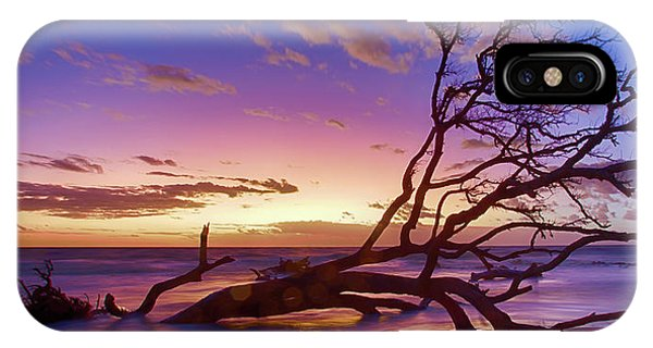 Driftwood Beach 1 IPhone Case