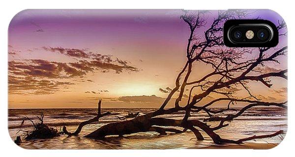 Driftwood Beach 2 IPhone Case