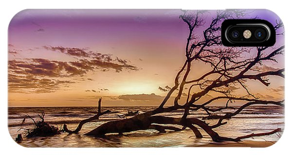 Driftwood Beach 2 IPhone Case
