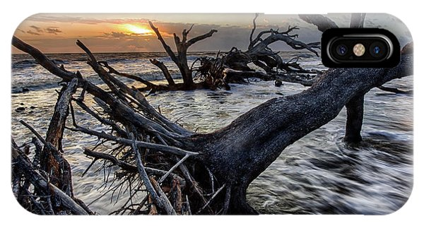 Driftwood Beach 4 IPhone Case