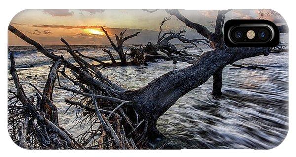 Driftwood Beach 5 IPhone Case