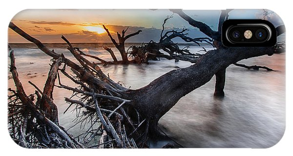 Driftwood Beach 6 IPhone Case