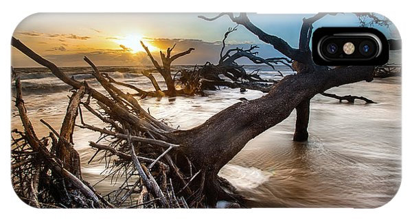 Driftwood Beach 7 IPhone Case