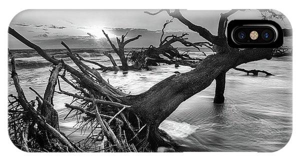 Driftwood Beach 8 IPhone Case