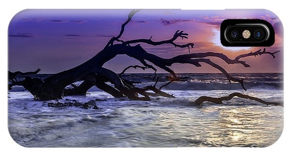 Driftwood Beach 9 IPhone Case