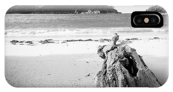 Wilsons Promontory iPhone Case - Driftwood On Beach Black And White by Tim Hester