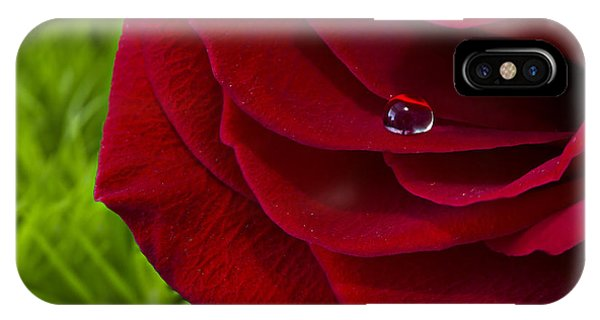 Drop On A Rose IPhone Case