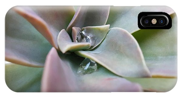 Droplets On Succulent IPhone Case
