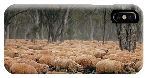 Droving Sheep  At Albert Australia IPhone Case