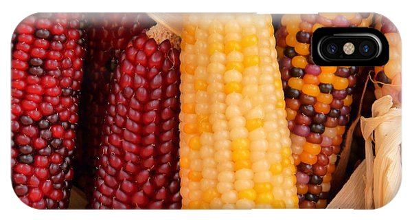 Dry Indian Corn IPhone Case