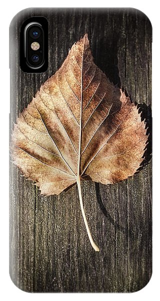 Fall Foliage iPhone Case - Dry Leaf On Wood by Scott Norris