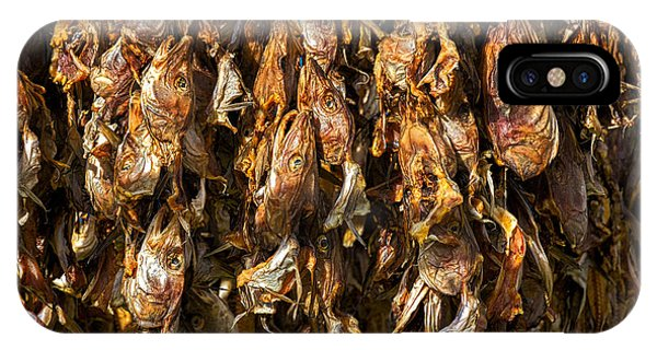 Drying Fish Heads - Iceland IPhone Case