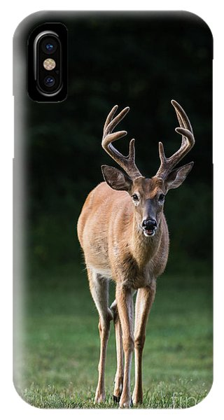 IPhone Case featuring the photograph Dsc_0076 by Andrea Silies