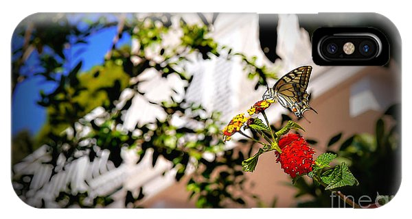 Dubrovniks Butterfly IPhone Case