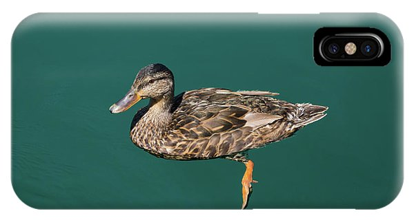 Duck Floats IPhone Case