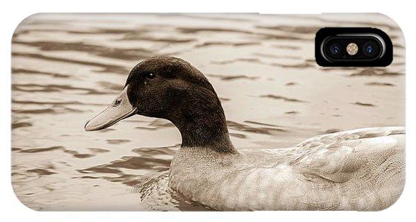 Duck In Pond IPhone Case