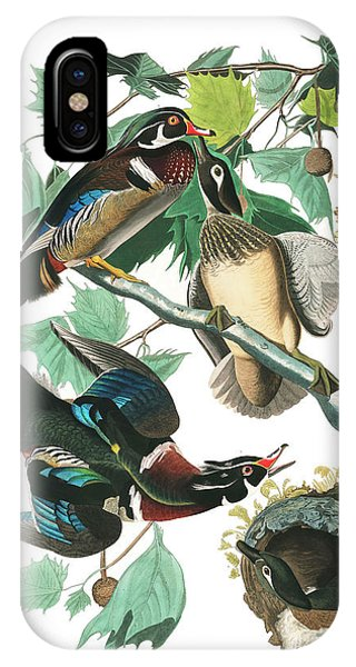 Wood Ducks iPhone Case - Lummer Or Wood Duck by John James Audubon