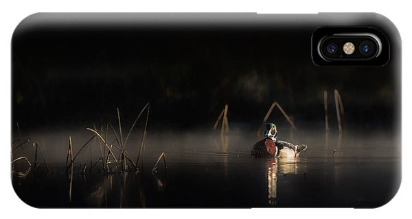 Duck Of The Morning Mist IPhone Case