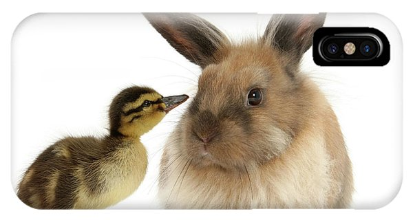 Duck Out Bunny IPhone Case