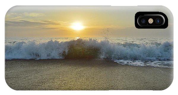 Duck Sunrise IPhone Case