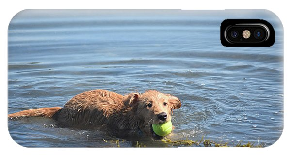 Duck Tolling Retriever With A Tennis Ball Swimming IPhone Case