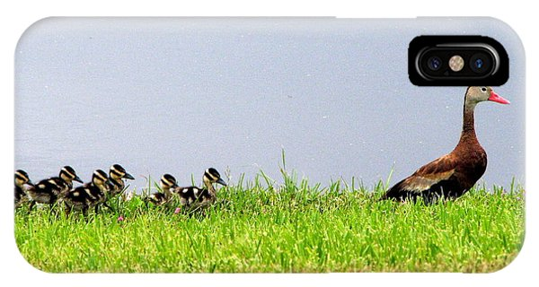 Duck Walk IPhone Case