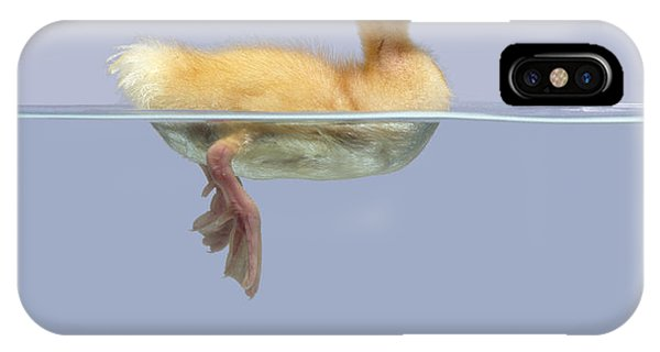 Duckling And Goldfish IPhone Case