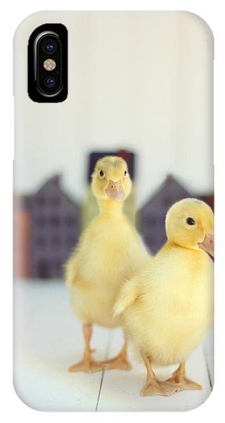 Cute Bird iPhone Case - Ducks In The Neighborhood by Amy Tyler