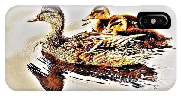Ducks IPhone Case