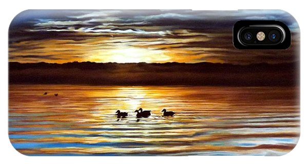 Ducks On Clear Lake IPhone Case