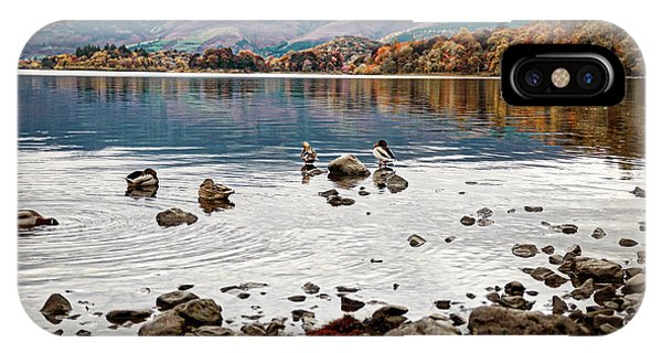 Ducks On Derwent IPhone Case