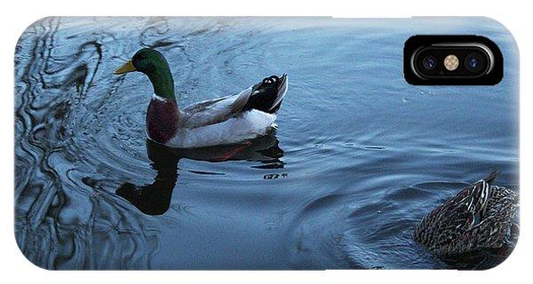 IPhone Case featuring the photograph Mallard Duck by Melinda Blackman