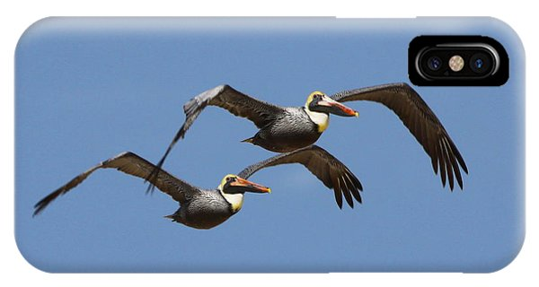 Duel Pelicans In Flight IPhone Case